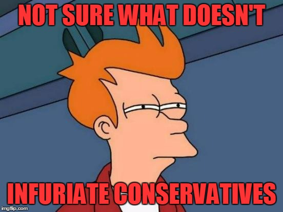 Futurama Fry Meme | NOT SURE WHAT DOESN'T INFURIATE CONSERVATIVES | image tagged in memes,futurama fry | made w/ Imgflip meme maker
