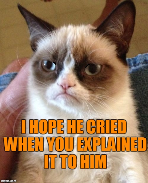 Grumpy Cat Meme | I HOPE HE CRIED WHEN YOU EXPLAINED IT TO HIM | image tagged in memes,grumpy cat | made w/ Imgflip meme maker