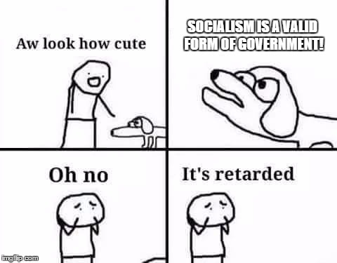 oh no its retarded | SOCIALISM IS A VALID FORM OF GOVERNMENT! | image tagged in oh no its retarded | made w/ Imgflip meme maker