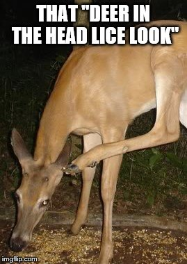 "That ""Deer in the Head Lice"" Look 