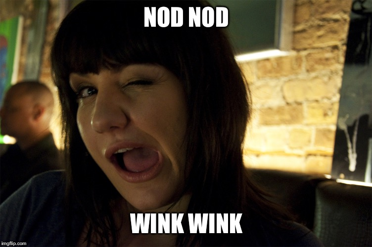 Wink | NOD NOD WINK WINK | image tagged in wink | made w/ Imgflip meme maker