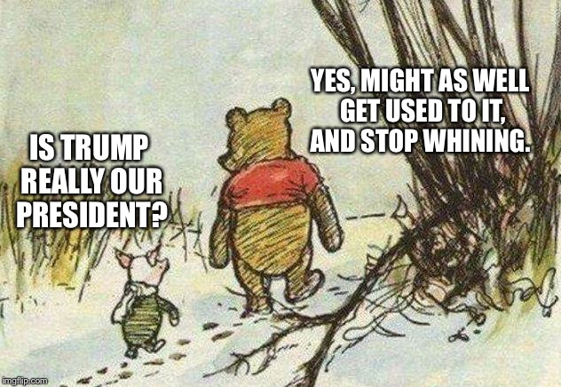 Pooh Piglet | IS TRUMP REALLY OUR PRESIDENT? YES, MIGHT AS WELL GET USED TO IT, AND STOP WHINING. | image tagged in pooh piglet | made w/ Imgflip meme maker