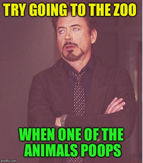 Face You Make Robert Downey Jr Meme | TRY GOING TO THE ZOO WHEN ONE OF THE ANIMALS POOPS | image tagged in memes,face you make robert downey jr | made w/ Imgflip meme maker
