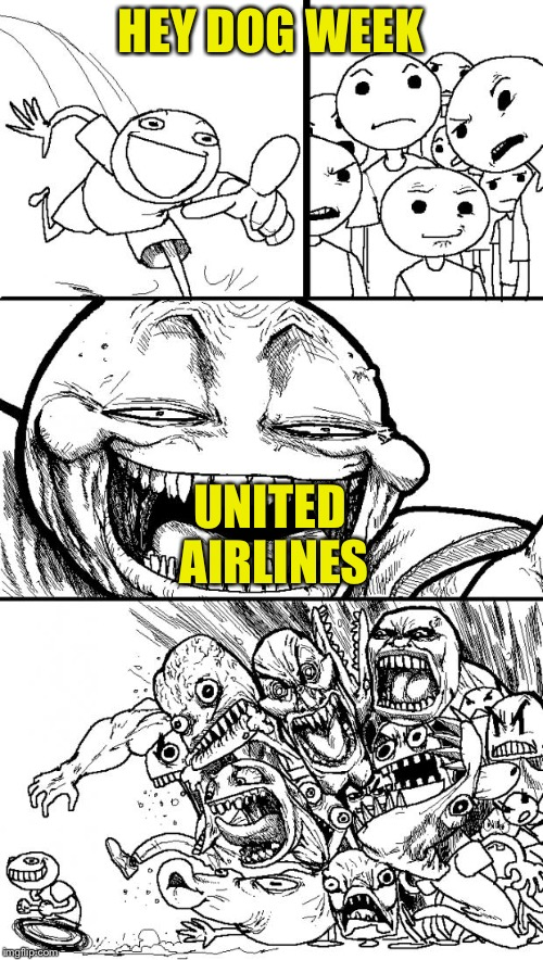 Hey Internet Meme | HEY DOG WEEK UNITED AIRLINES | image tagged in memes,hey internet | made w/ Imgflip meme maker