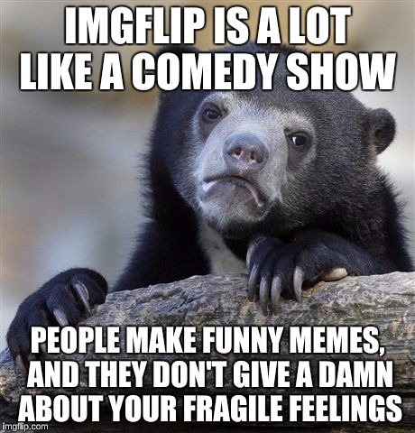 Confession Bear Meme | IMGFLIP IS A LOT LIKE A COMEDY SHOW PEOPLE MAKE FUNNY MEMES, AND THEY DON'T GIVE A DAMN ABOUT YOUR FRAGILE FEELINGS | image tagged in memes,confession bear | made w/ Imgflip meme maker
