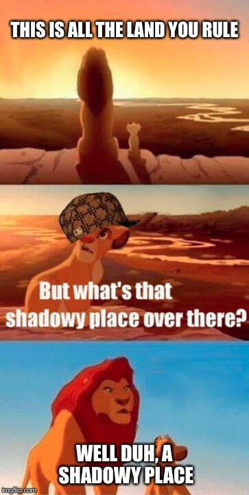 Simba Shadowy Place Meme | THIS IS ALL THE LAND YOU RULE WELL DUH, A SHADOWY PLACE | image tagged in memes,simba shadowy place,scumbag | made w/ Imgflip meme maker