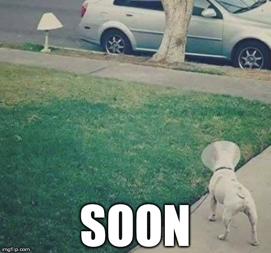 Soon | SOON | image tagged in she is all mine,getting ready,still a better love story than twilight,soon,oblivious hot girl | made w/ Imgflip meme maker