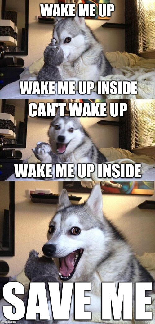 WAKE ME UP WAKE ME UP INSIDE SAVE ME CAN'T WAKE UP WAKE ME UP INSIDE | image tagged in memes,bad pun dog | made w/ Imgflip meme maker