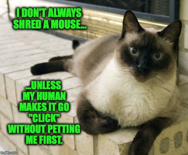 "Kitty Cat Mea Culpa | I DON'T ALWAYS SHRED A MOUSE... ...UNLESS MY HUMAN MAKES IT GO ""CLICK"" WITHOUT PETTING ME FIRST. 
