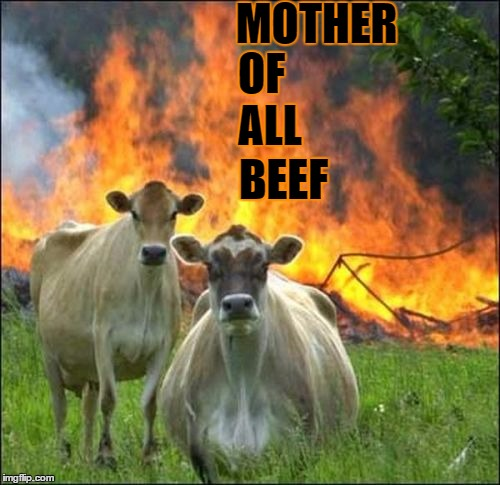 YOU GOTTA BEEF?! | MOTHER BEEF OF ALL | image tagged in evil cows,moab,politics lol,lol so funny,your country needs you,got beef | made w/ Imgflip meme maker