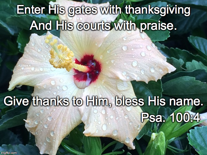 Enter His gates with thanksgiving And His courts with praise. Give thanks to Him, bless His name. Psa. 100:4 | image tagged in gates | made w/ Imgflip meme maker