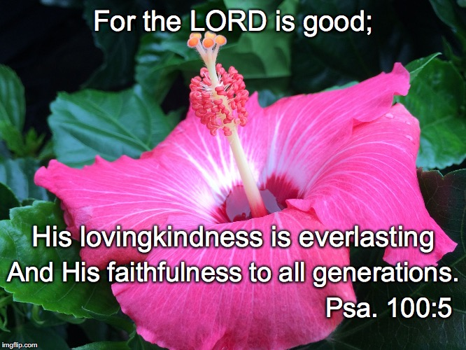 For the LORD is good; His lovingkindness is everlasting And His faithfulness to all generations. Psa. 100:5 | image tagged in generations | made w/ Imgflip meme maker