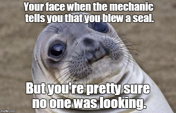 Awkward Moment Sealion Meme | Your face when the mechanic tells you that you blew a seal. But you're pretty sure no one was looking. | image tagged in memes,awkward moment sealion | made w/ Imgflip meme maker