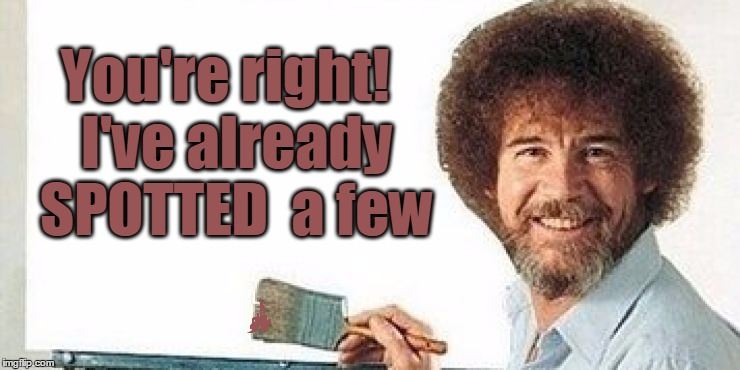 Bob ross | You're right!  I've already  SPOTTED  a few | image tagged in bob ross | made w/ Imgflip meme maker