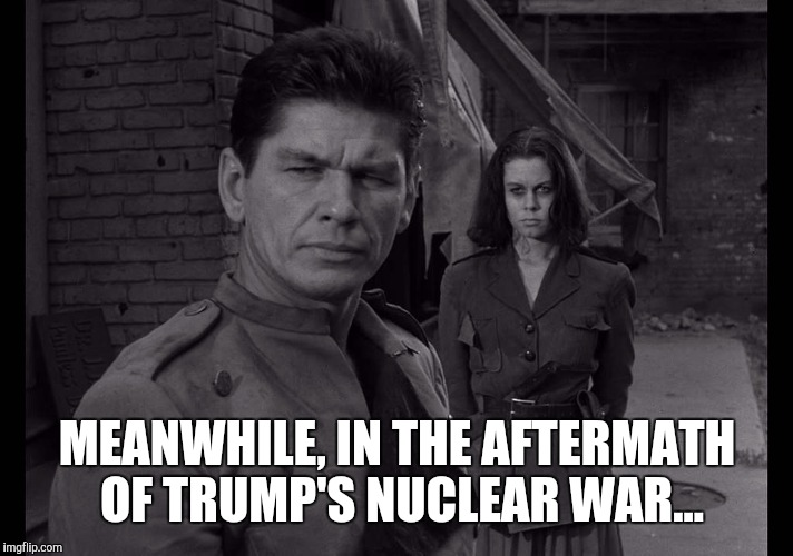 MEANWHILE, IN THE AFTERMATH OF TRUMP'S NUCLEAR WAR... | image tagged in memes,twilight zone,two,charles bronson,elizabeth montgomery,nuclear war | made w/ Imgflip meme maker