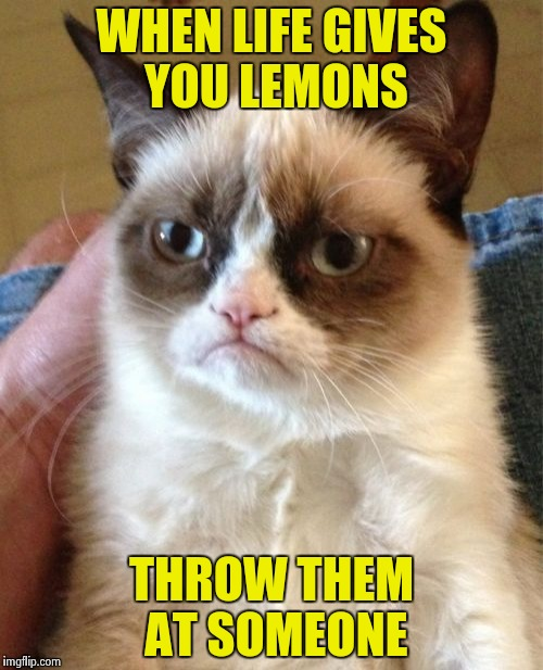 Grumpy Cat Meme | WHEN LIFE GIVES YOU LEMONS THROW THEM AT SOMEONE | image tagged in memes,grumpy cat | made w/ Imgflip meme maker