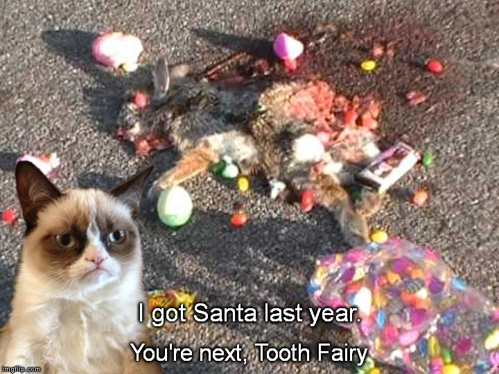Grumpy Easter | I got Santa last year. You're next, Tooth Fairy | image tagged in grumpy,easter bunny | made w/ Imgflip meme maker