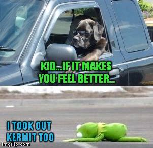 KID...IF IT MAKES YOU FEEL BETTER... I TOOK OUT KERMIT TOO | made w/ Imgflip meme maker