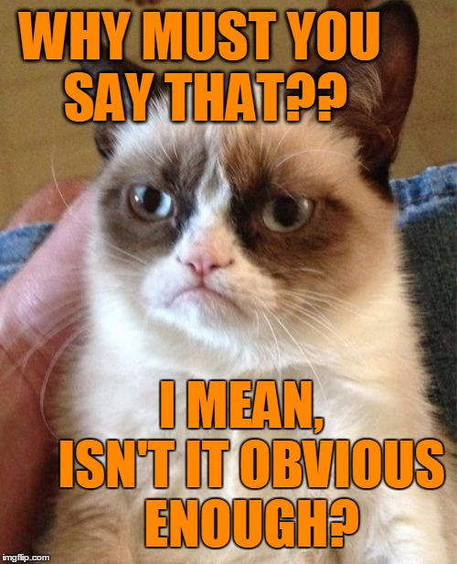 Grumpy Cat Meme | WHY MUST YOU SAY THAT?? I MEAN,  ISN'T IT OBVIOUS ENOUGH? | image tagged in memes,grumpy cat | made w/ Imgflip meme maker