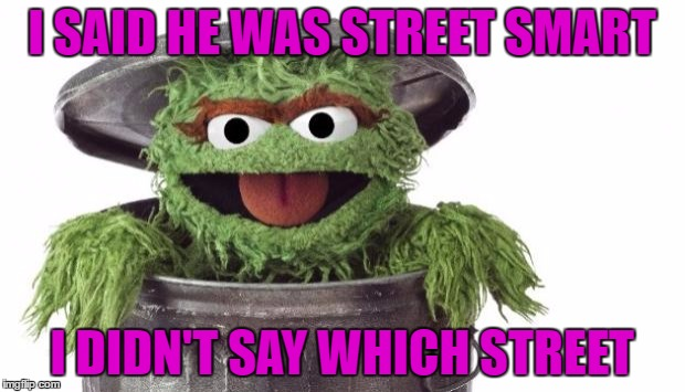 Oscar trashcan Sesame street | I SAID HE WAS STREET SMART I DIDN'T SAY WHICH STREET | image tagged in oscar trashcan sesame street | made w/ Imgflip meme maker