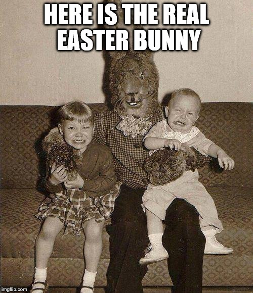 Creepy easter bunny | HERE IS THE REAL EASTER BUNNY | image tagged in creepy easter bunny | made w/ Imgflip meme maker
