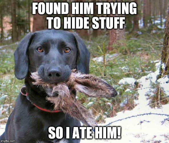 FOUND HIM TRYING TO HIDE STUFF SO I ATE HIM! | image tagged in ate easter bunny | made w/ Imgflip meme maker