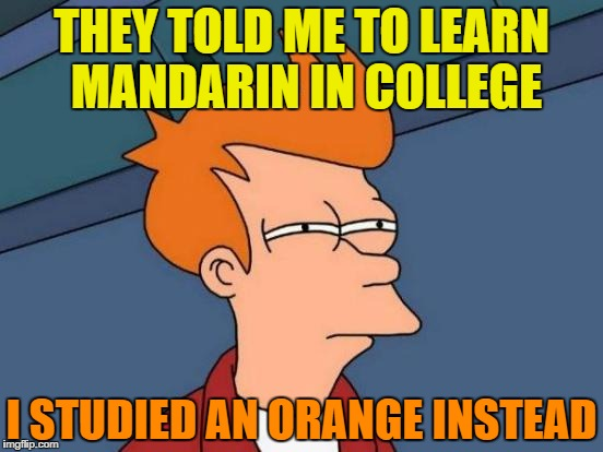 Futurama Fry | THEY TOLD ME TO LEARN MANDARIN IN COLLEGE I STUDIED AN ORANGE INSTEAD | image tagged in memes,futurama fry | made w/ Imgflip meme maker