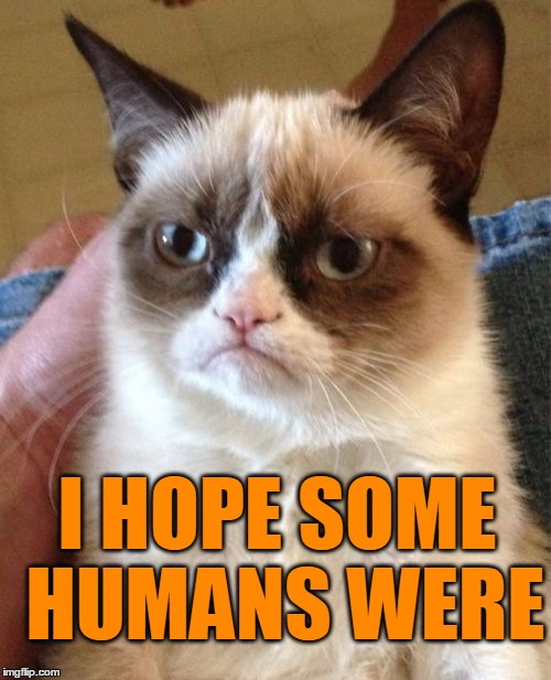 Grumpy Cat Meme | I HOPE SOME HUMANS WERE | image tagged in memes,grumpy cat | made w/ Imgflip meme maker