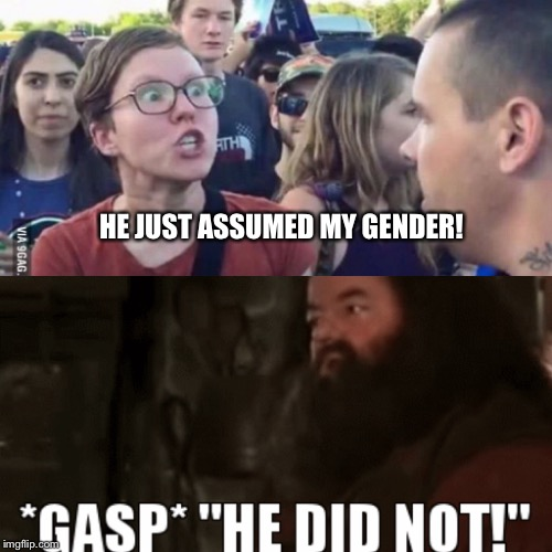 He assumed my gender! | HE JUST ASSUMED MY GENDER! | image tagged in harry potter,hagrid,gender confusion,gender identity,gender equality | made w/ Imgflip meme maker