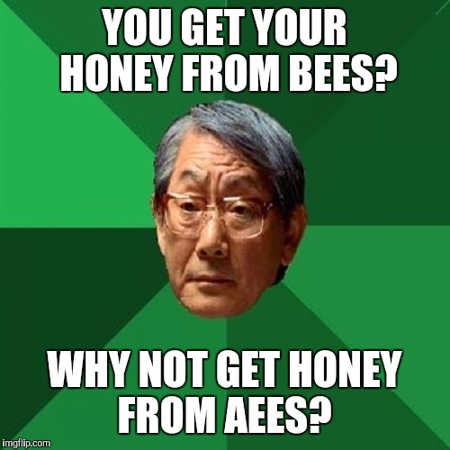 Be careful, those honey aees have a mean sting... | YOU GET YOUR HONEY FROM BEES? WHY NOT GET HONEY FROM AEES? | image tagged in memes,high expectations asian father,honey,honey bees | made w/ Imgflip meme maker