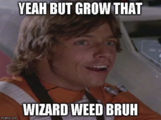 YEAH BUT GROW THAT WIZARD WEED BRUH | made w/ Imgflip meme maker