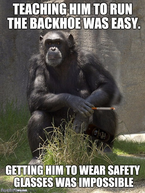 Smoking chimp | TEACHING HIM TO RUN THE BACKHOE WAS EASY. GETTING HIM TO WEAR SAFETY GLASSES WAS IMPOSSIBLE | image tagged in smoking chimp | made w/ Imgflip meme maker