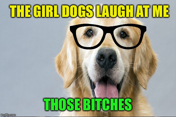 THE GIRL DOGS LAUGH AT ME THOSE B**CHES | made w/ Imgflip meme maker