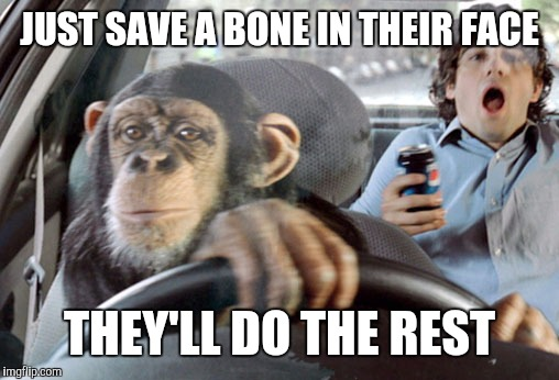 Monkey cab driver | JUST SAVE A BONE IN THEIR FACE THEY'LL DO THE REST | image tagged in monkey cab driver | made w/ Imgflip meme maker