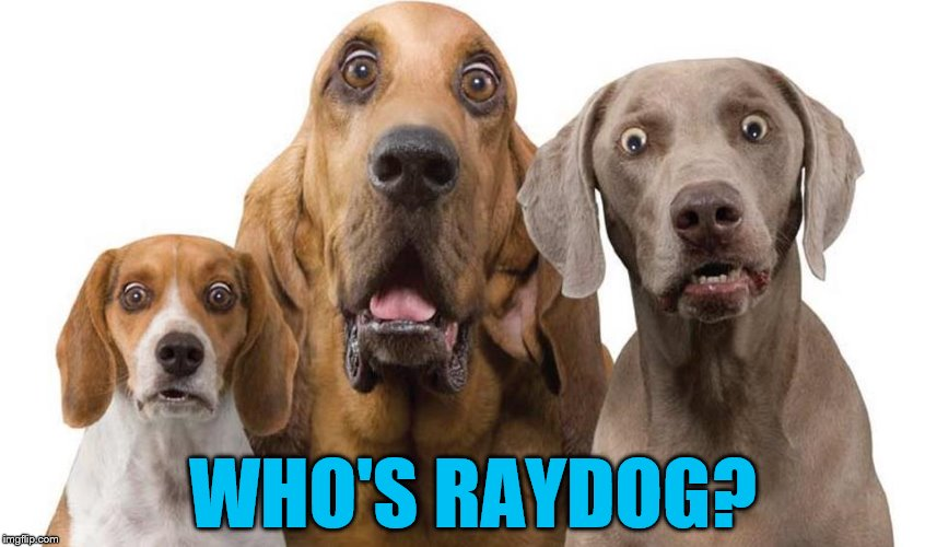 WHO'S RAYDOG? | made w/ Imgflip meme maker