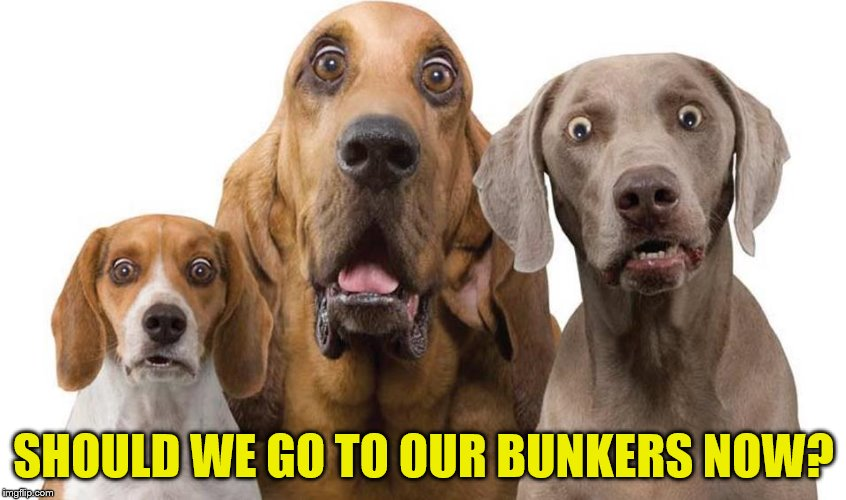 SHOULD WE GO TO OUR BUNKERS NOW? | made w/ Imgflip meme maker