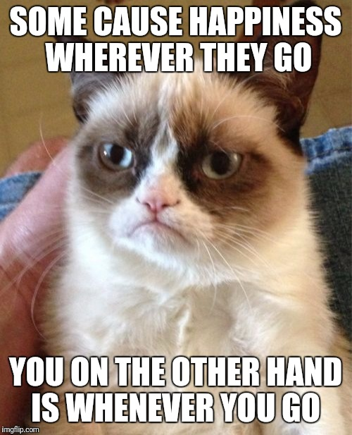 Leave Now Hooman  | SOME CAUSE HAPPINESS WHEREVER THEY GO YOU ON THE OTHER HAND IS WHENEVER YOU GO | image tagged in memes,grumpy cat,funny | made w/ Imgflip meme maker