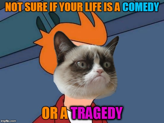 Just because other people are laughing, doesn't mean it's a comedy :o :o :o | NOT SURE IF YOUR LIFE IS A COMEDY OR A TRAGEDY COMEDY TRAGEDY | image tagged in memes,grumpy cat,futurama fry,memestrocity,grumpy cat insults,tragedy | made w/ Imgflip meme maker