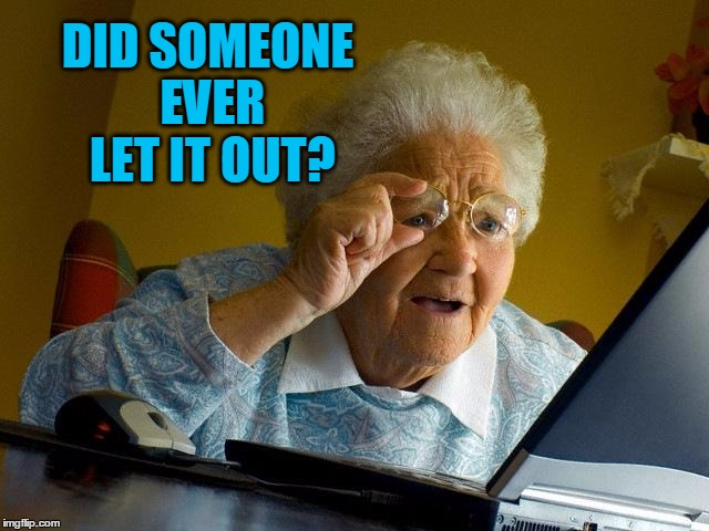Grandma Finds The Internet Meme | DID SOMEONE EVER LET IT OUT? | image tagged in memes,grandma finds the internet | made w/ Imgflip meme maker