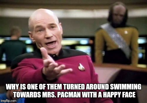 Picard Wtf Meme | WHY IS ONE OF THEM TURNED AROUND SWIMMING TOWARDS MRS. PACMAN WITH A HAPPY FACE | image tagged in memes,picard wtf | made w/ Imgflip meme maker