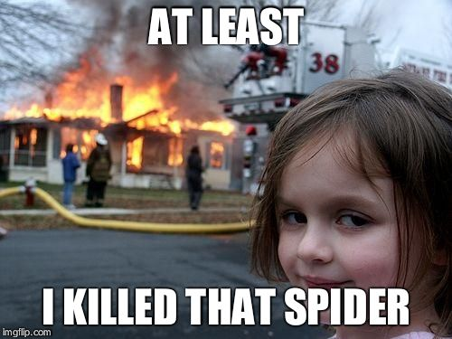 Disaster Girl | AT LEAST I KILLED THAT SPIDER | image tagged in memes,disaster girl | made w/ Imgflip meme maker