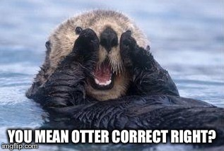 YOU MEAN OTTER CORRECT RIGHT? | made w/ Imgflip meme maker