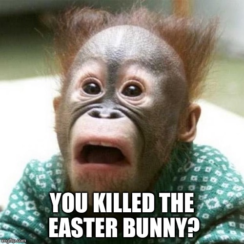 YOU KILLED THE EASTER BUNNY? | made w/ Imgflip meme maker