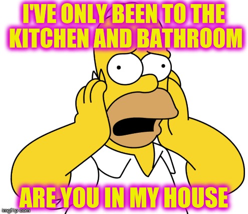 I'VE ONLY BEEN TO THE KITCHEN AND BATHROOM ARE YOU IN MY HOUSE | made w/ Imgflip meme maker