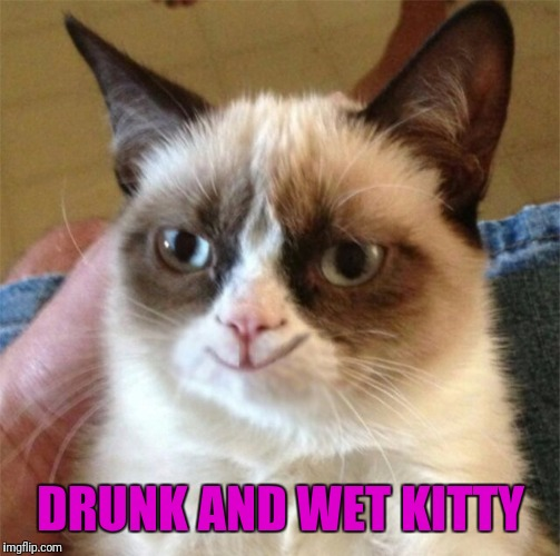 DRUNK AND WET KITTY | made w/ Imgflip meme maker