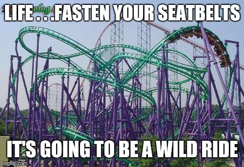 LIFE . . .FASTEN YOUR SEATBELTS IT'S GOING TO BE A WILD RIDE | made w/ Imgflip meme maker