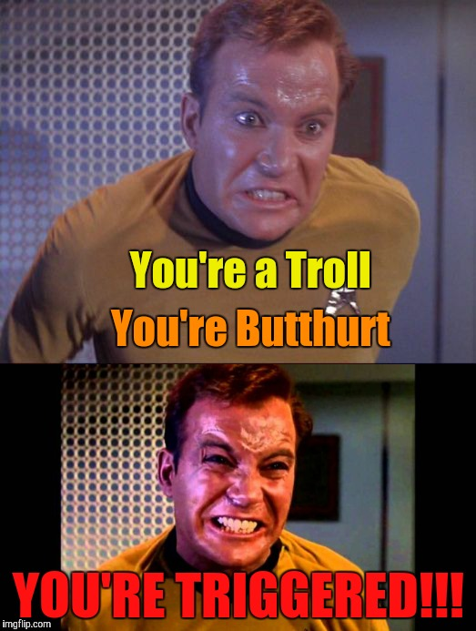 You're a Troll YOU'RE TRIGGERED!!! You're Butthurt | made w/ Imgflip meme maker