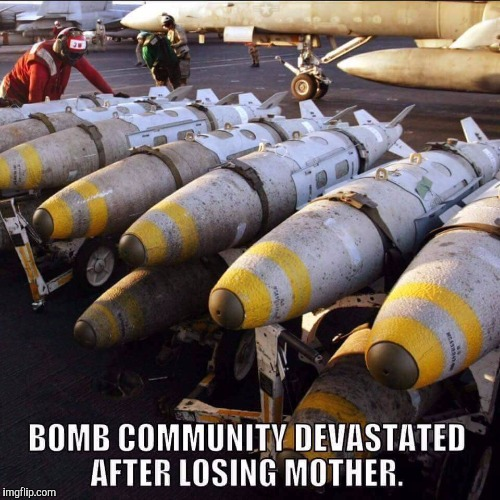 Let's not forget the silent victims | image tagged in memes,moab,bomb | made w/ Imgflip meme maker