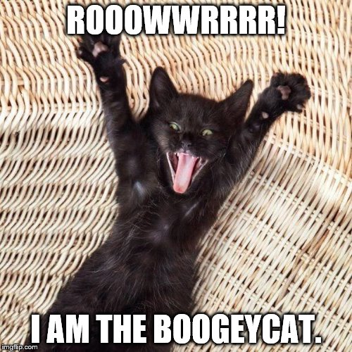 Happy cat  | ROOOWWRRRR! I AM THE BOOGEYCAT. | image tagged in happy cat | made w/ Imgflip meme maker
