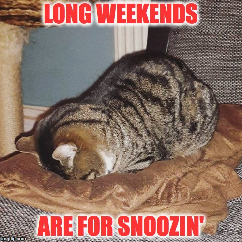 Gotta Love Long Weekends :-) | LONG WEEKENDS ARE FOR SNOOZIN' | image tagged in serious snoozin' | made w/ Imgflip meme maker